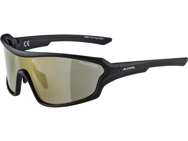 Alpina Lyron Shield P Glasses black matt